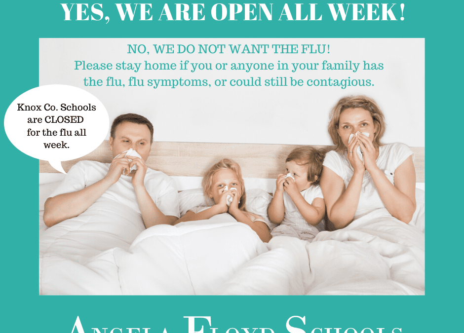 Knox Co. Schools Closed due to Flu